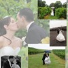 Beautiful Backdrops for Wonderful Wedding Photos
