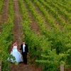 How to Plan a Vintage Inspired Vineyard Wedding.
