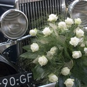 Wedding Cars Port Stephens.