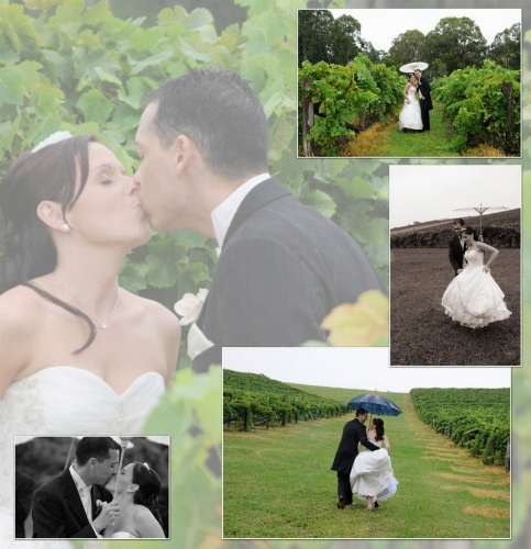 Beautiful Vineyard Weddings